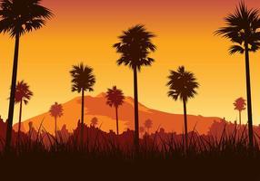Kerala ricefield sunset vecteur gratuit