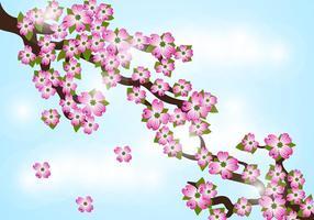 Vecteur de fond de fleur de dogwood