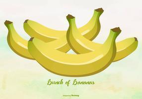 Illustration de bananes jaunes / plantain vecteur
