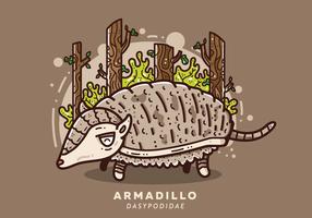 Vector Armadillo gratuit