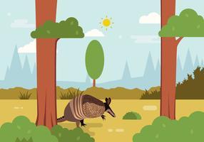 Vector d'illustration d'armadillo
