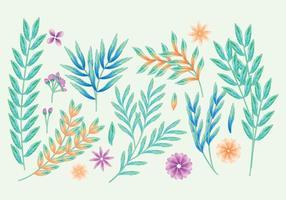 Branches décoratives vectorielles vecteur