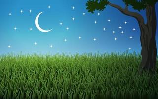 belle nuit dans le pré