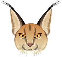 Tête de chat caracal sur fond blanc vecteur