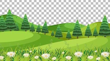 paysage de scène de parc naturel vierge sur fond transparent