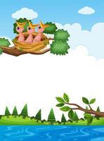 poussins au nid sur une branche d'arbre vecteur