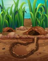 trou animal souterrain vide vecteur