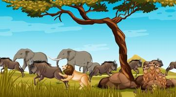groupe d & # 39; animaux sauvages africains dans la scène de la forêt vecteur