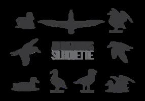 Vecteur albatros sillhaouttes