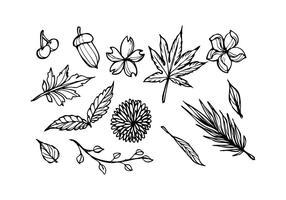 Vecteur d'icônes de croquis floral gratuit