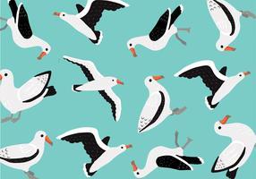 Vecteur de modèle d'albatros