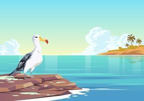 Albatros sur le vecteur de l'eau