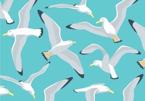 Fond d'illustration d'Albatros vecteur