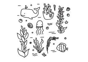 La faune et la flore des vecteurs de l'océan vecteur