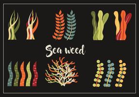 Pack vecteur de mauvaises herbes de mer