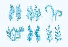 Vecteur griffonnage de mauvaises herbes de mer