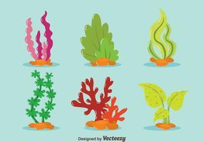 Beau vecteur de collection de mauvaises herbes de mer