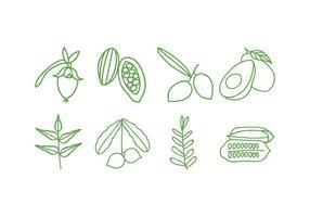 Ensemble d'icônes de plantes à base de plantes vecteur