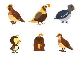 Vecteur d'icônes de quail gratuit