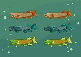 vecteurs de poisson muskie emblématiques gratuits