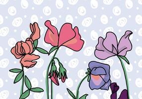 Fond de fleurs de pois sucrés vecteur