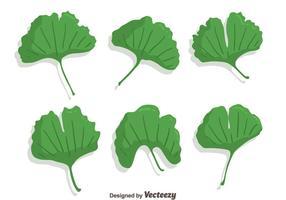 vecteur vert de feuille de ginkgo