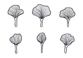 Ginkgo leafes illustration vecteur