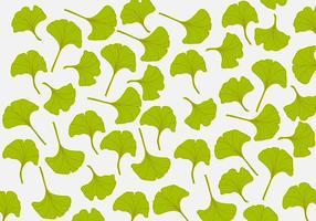 Fond d'écran Ginkgo Leaf vecteur