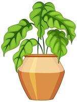 Plante en pot avec de la terre isolé sur fond blanc vecteur