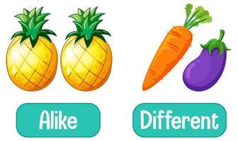 mots opposés avec semblables et différents