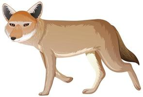 coyote isolé sur fond blanc vecteur