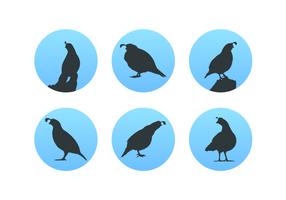 quail silhouettes pack vecteur gratuit