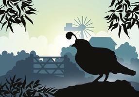 Silhouette du beau vecteur d'oiseaux à la quail
