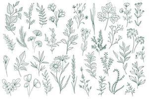 lot d'éléments décoratifs floraux dessinés à la main vecteur
