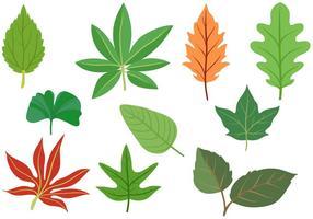 Vecteurs de feuilles libres vecteur