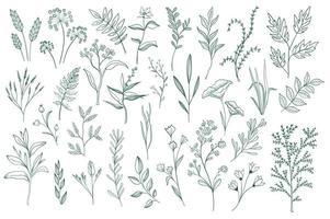 ensemble d'éléments décoratifs floraux vecteur