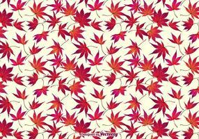 automne japonais feuille d'érable fond vecteur