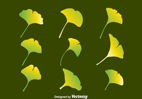 vecteur de collection de feuilles de gradient ginkgo