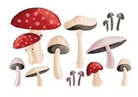 Ensemble vectoriel de champignons dessinés à la main