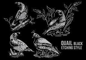 style de gravure noire aux caille vecteur