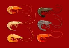 Illustration des crevettes vecteur gratuit