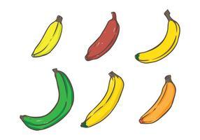 Variante de banane vecteur