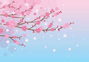 Plum Blossom Fond rose vecteur