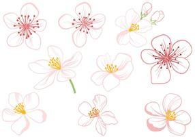 Fleur de pommier gratuite vecteur
