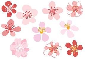 Vecteurs libres de fleurs vecteur