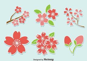Vecteur de fleur de fleur de prunier