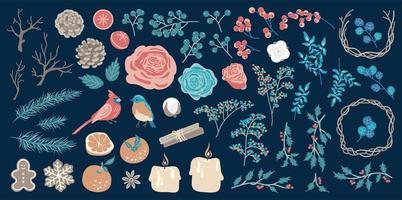 grand ensemble d'éléments floraux d'hiver, d'oiseaux et de décorations. vecteur