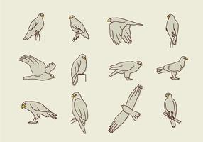 Icônes Buzzard Eagle vecteur