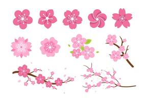 Vecteurs de fleur de fleur rose