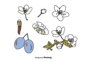 Vecteur de fleur de prunier